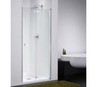 Душевая дверь в нишу Provex Combi Free 0004 CF 05 GL R